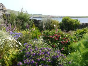 Orkney Garden Trails, Quoy of Houton